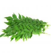 CURRY LEAVES  (PKT)